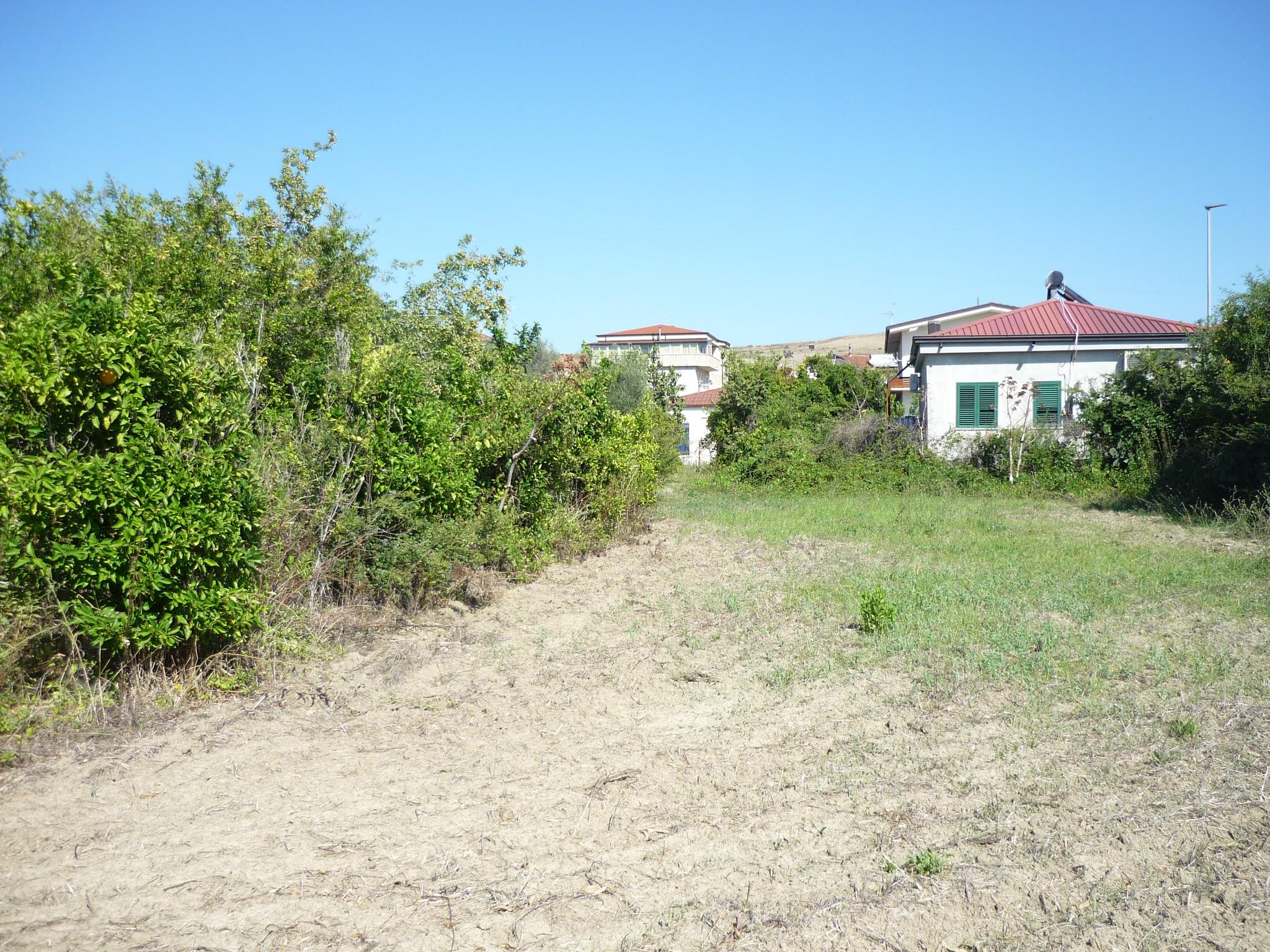 Terreno edificabile in vendita di 3.000 mq circa zona Farina